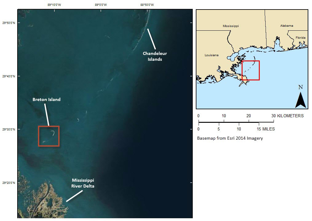 Data Release A GIS Compilation of Vector Shorelines and Associated
